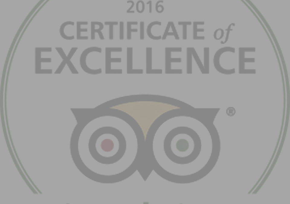 TripAdvisor® Press Release about Certificate of Excellence
